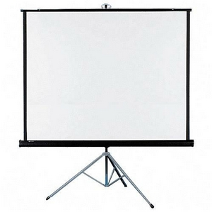 Where to find PROJECTOR SCREEN 50  X 50 in Stevens