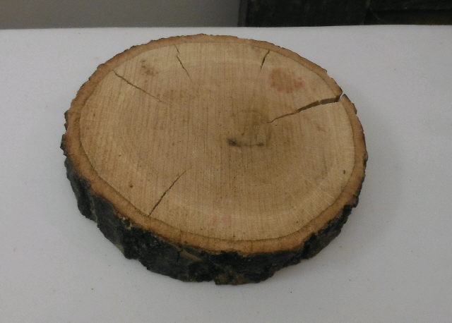 Where to find VINTAGE TREE STUMP DISC SMALL in Stevens