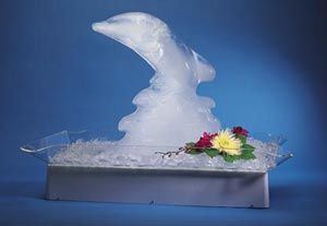 Where to find ICE SCULPTURE TRAY in Stevens
